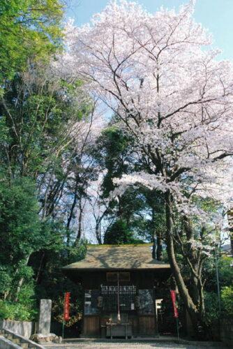 春の神明社